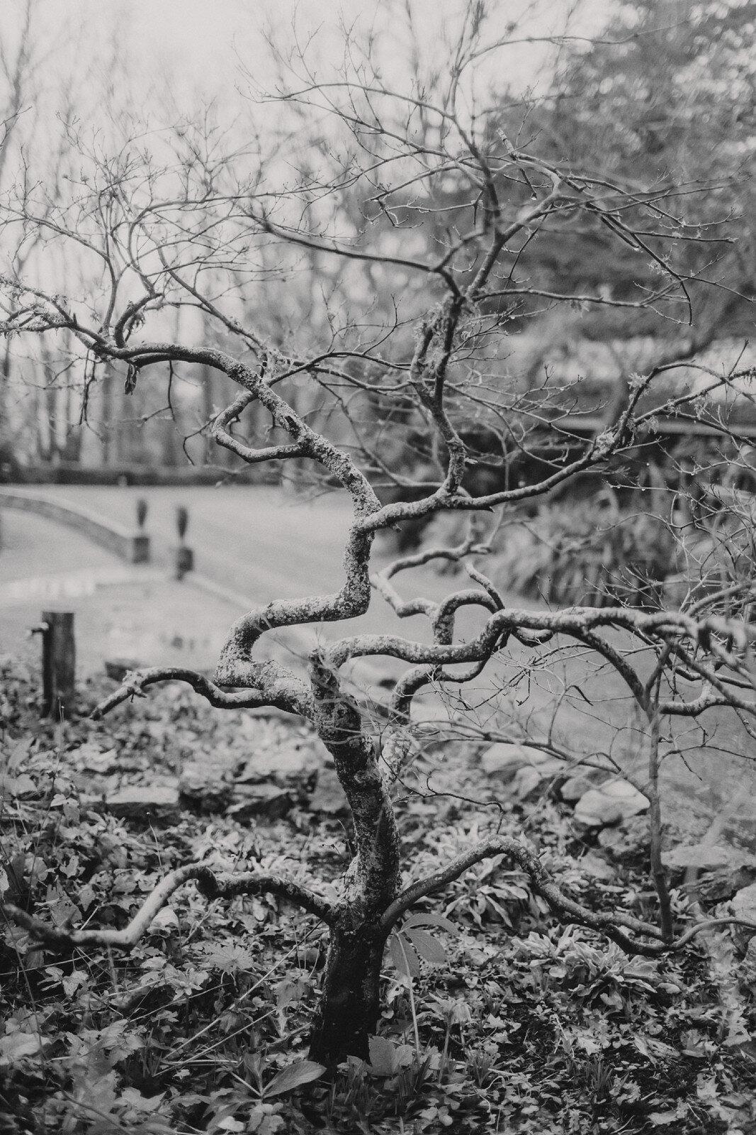 Wallingford in Winter, Hawkes Bay. Photos by Jenny Siaosi. Siaosi Photography.