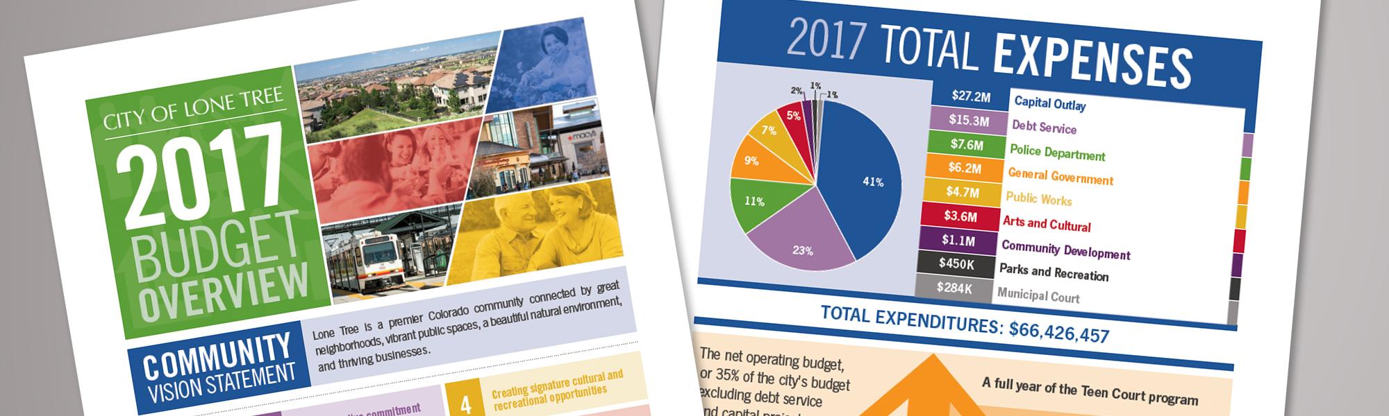 local government budget brief