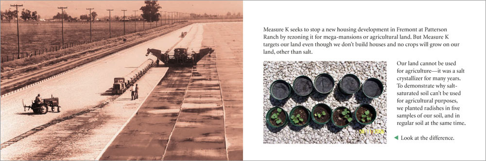 Cargill brochure8-4.jpg