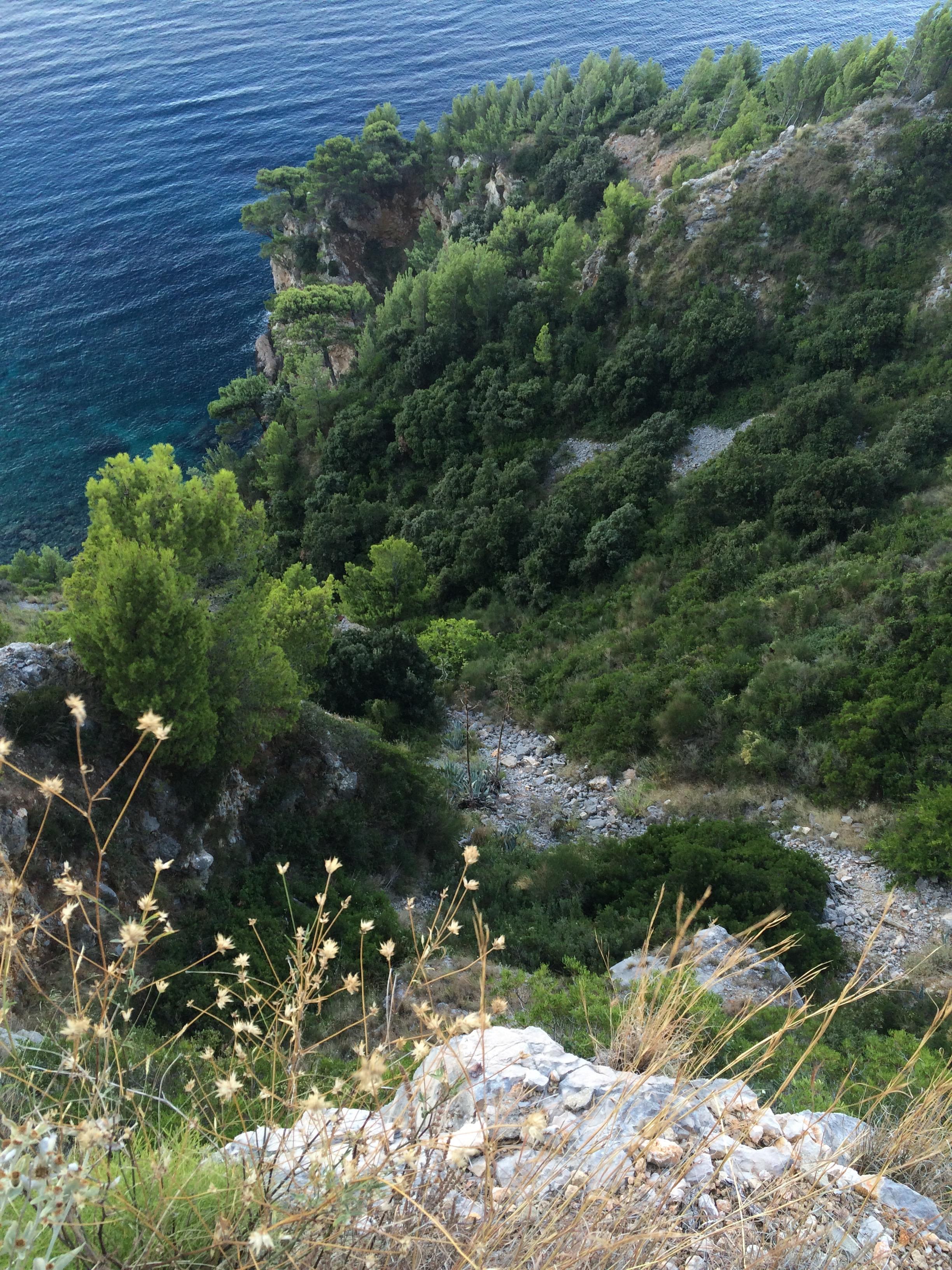 Hillside of Park Orsula, Dubrovnik, Croatia.