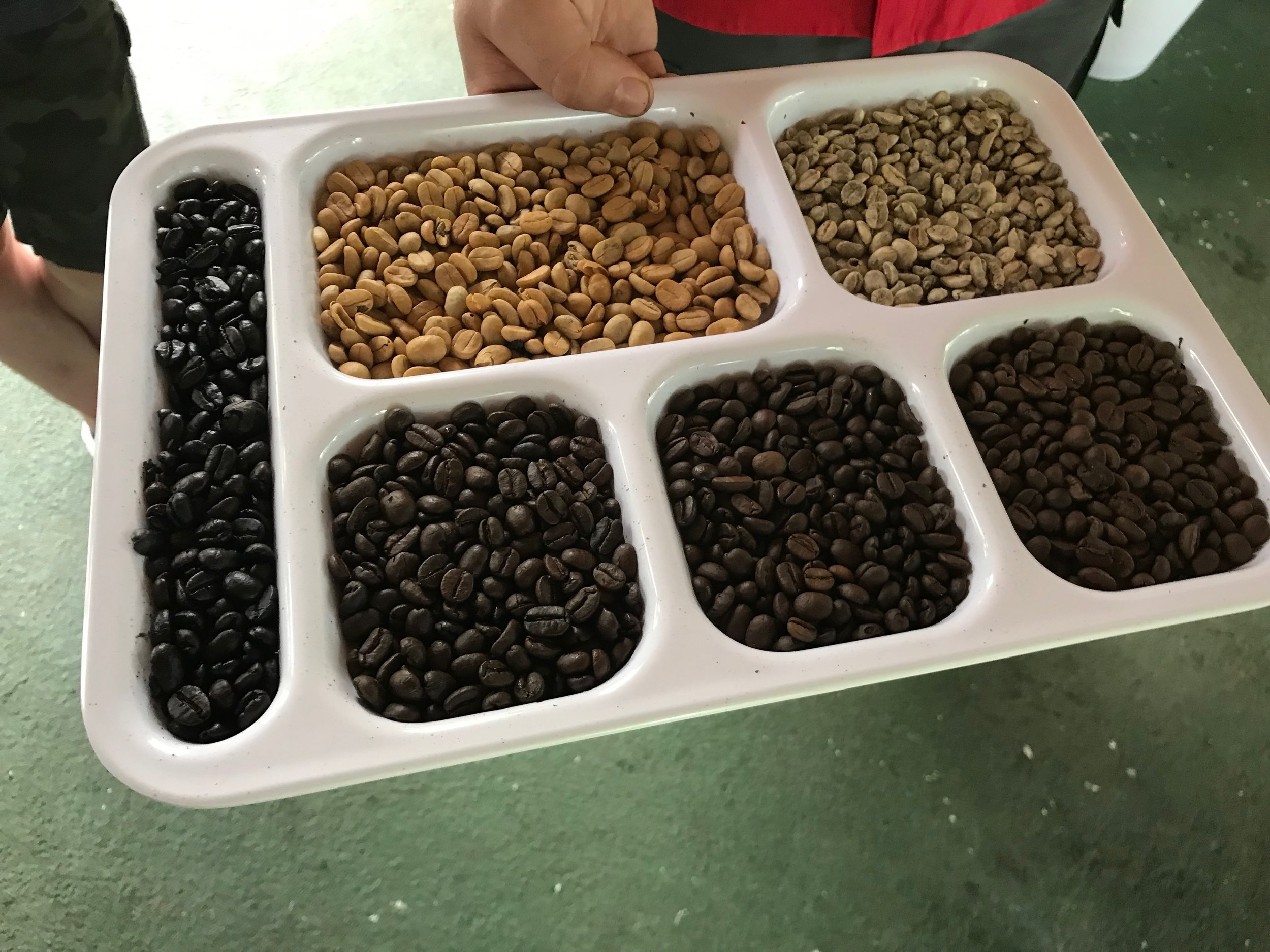 Different shades of freshly roasted coffee.