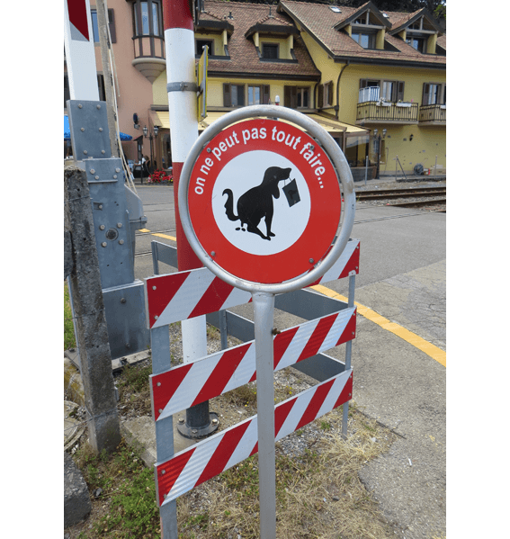 cchorus_SwissDOG SIGNS.png