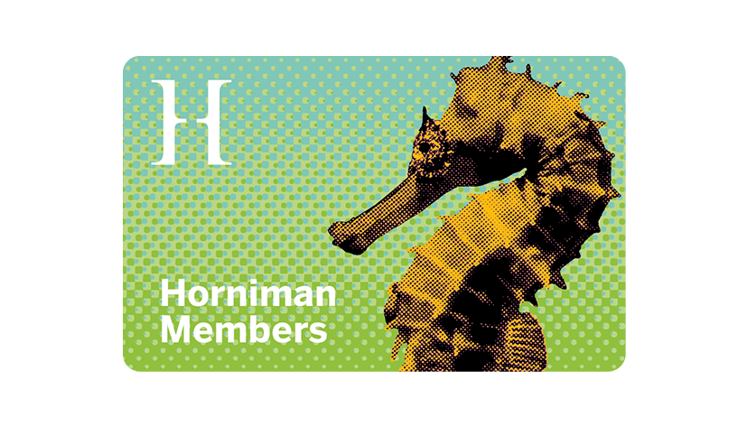 cchorus_HornimanMemBenf6.png