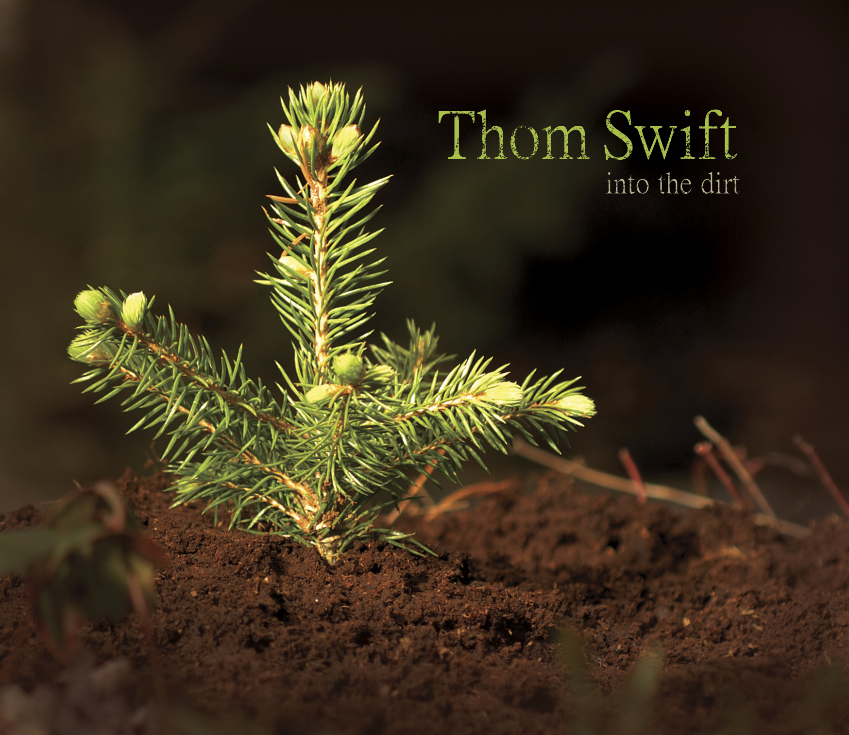 TSwift_IntoTheDirt_COVER.jpg