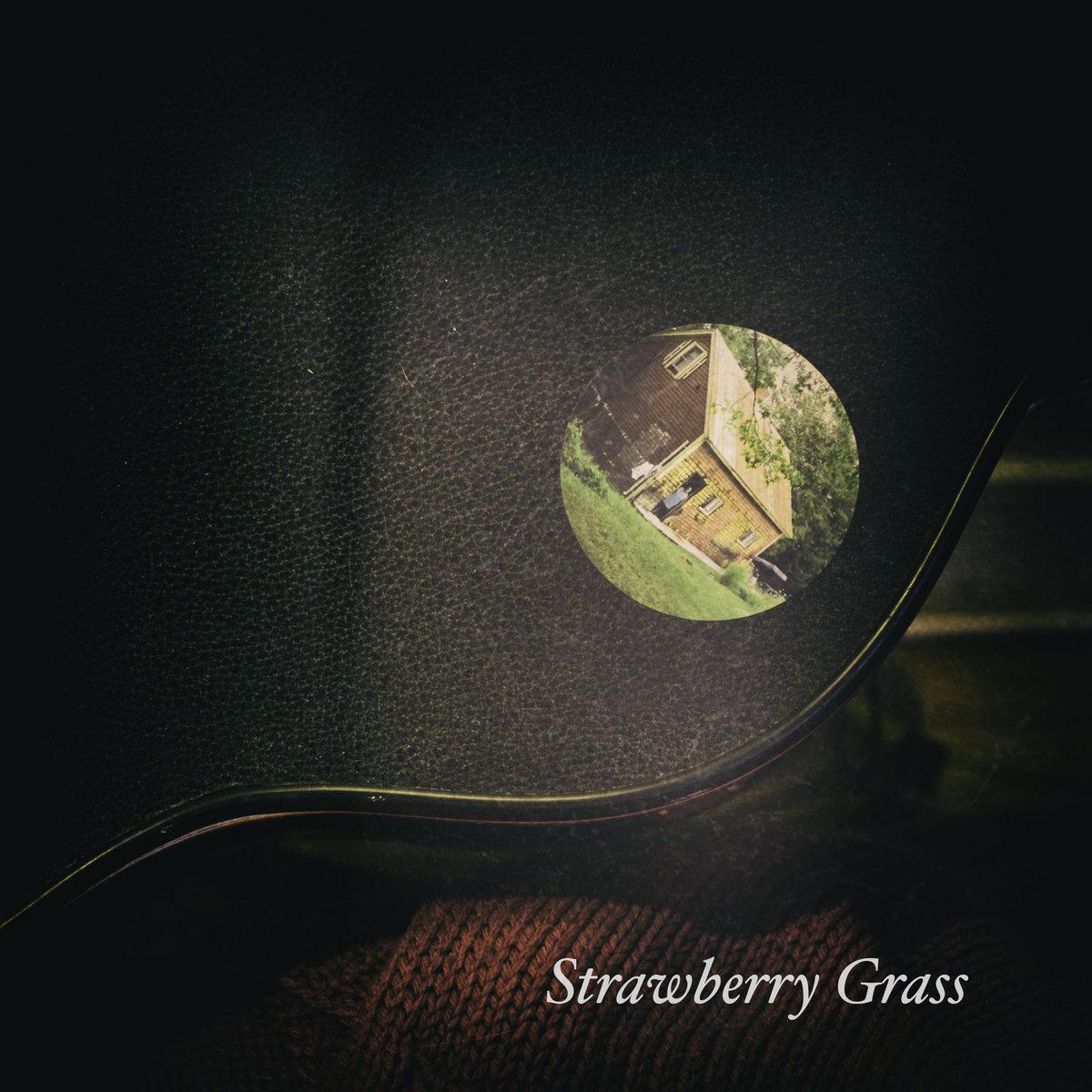 davidrelliott_strawberrygrass.jpg