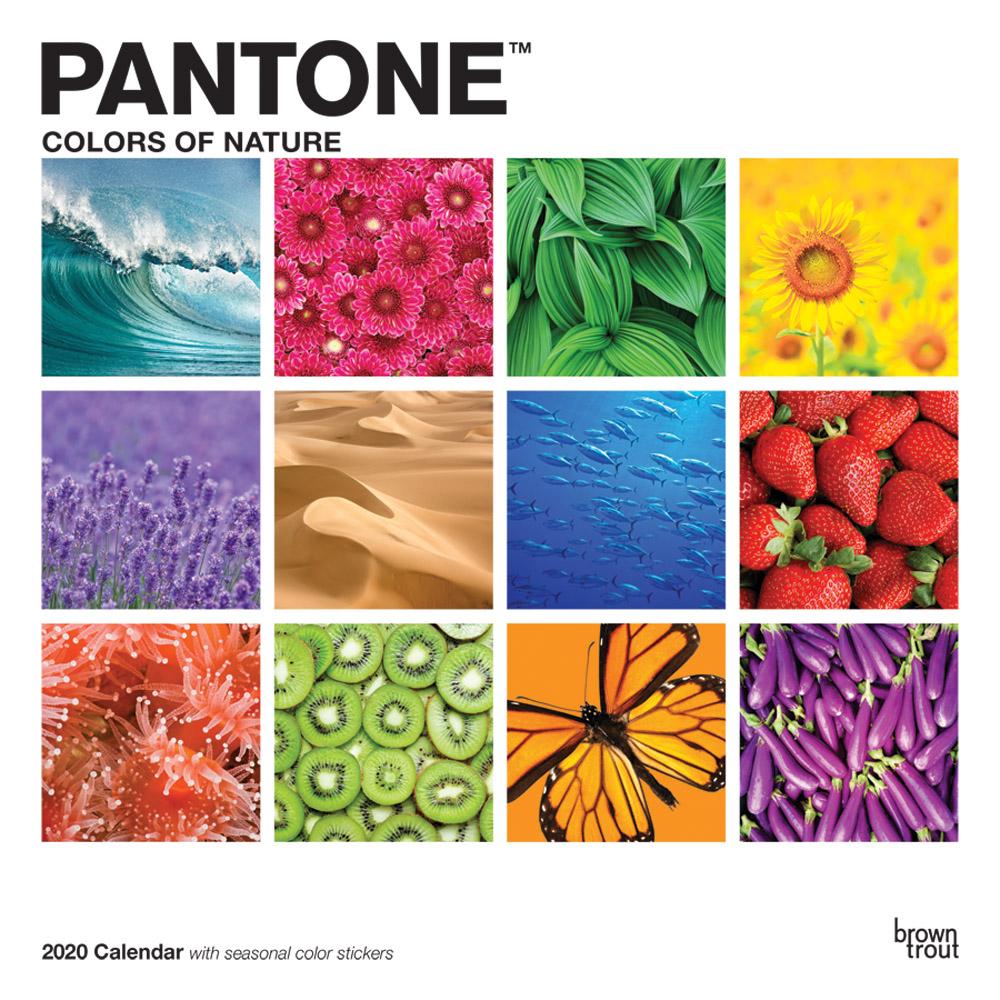 1206-7__Pantone__BT_12SQ20_v08_CVR_RGB_1000.jpg