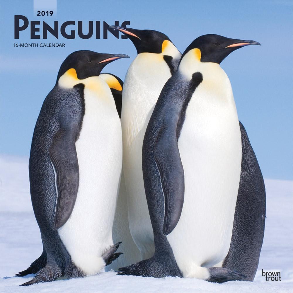 7563-5__Penguins__BT_12SQ19_v00_CVR_RGB_1000.jpg
