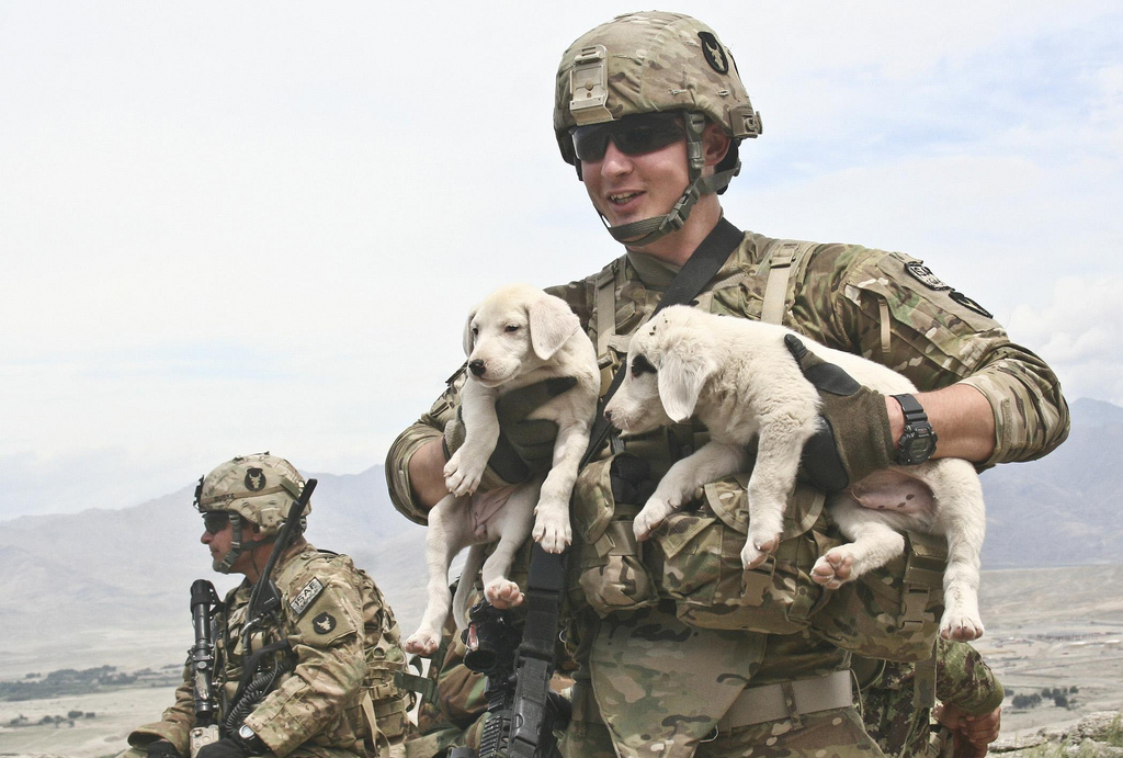 Photo Credit:  The U.S. Army via  photopin  cc