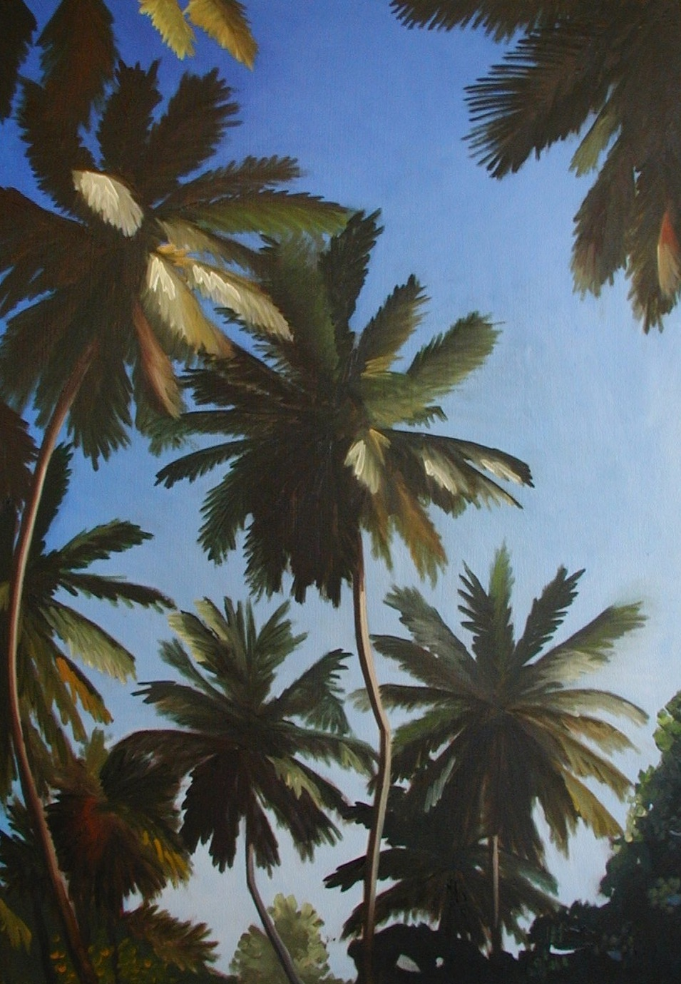 "Dominican Palm Trees - oil on canvas - 36"" x 25"" - 2002"