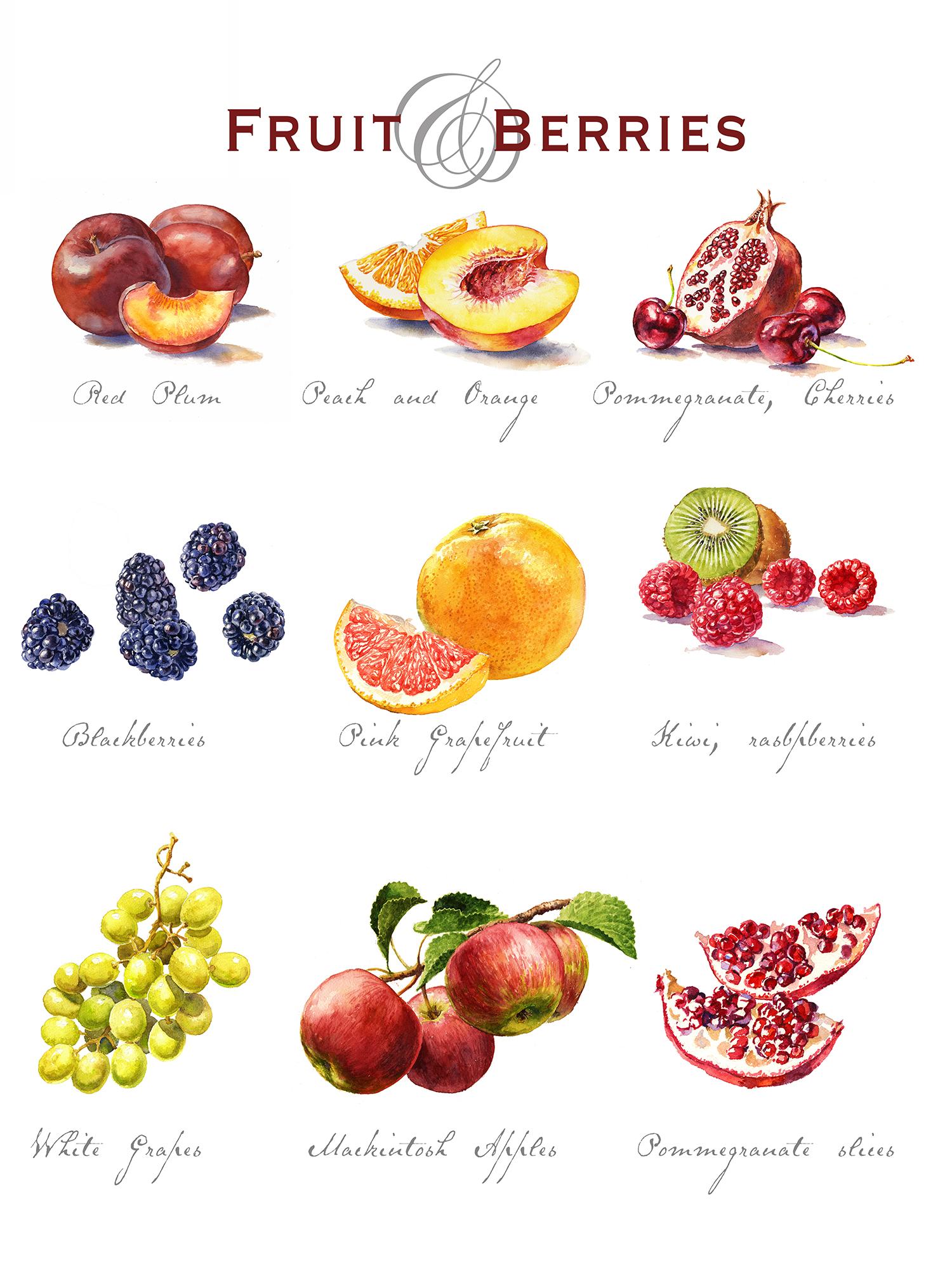 fruit-behance150.jpg