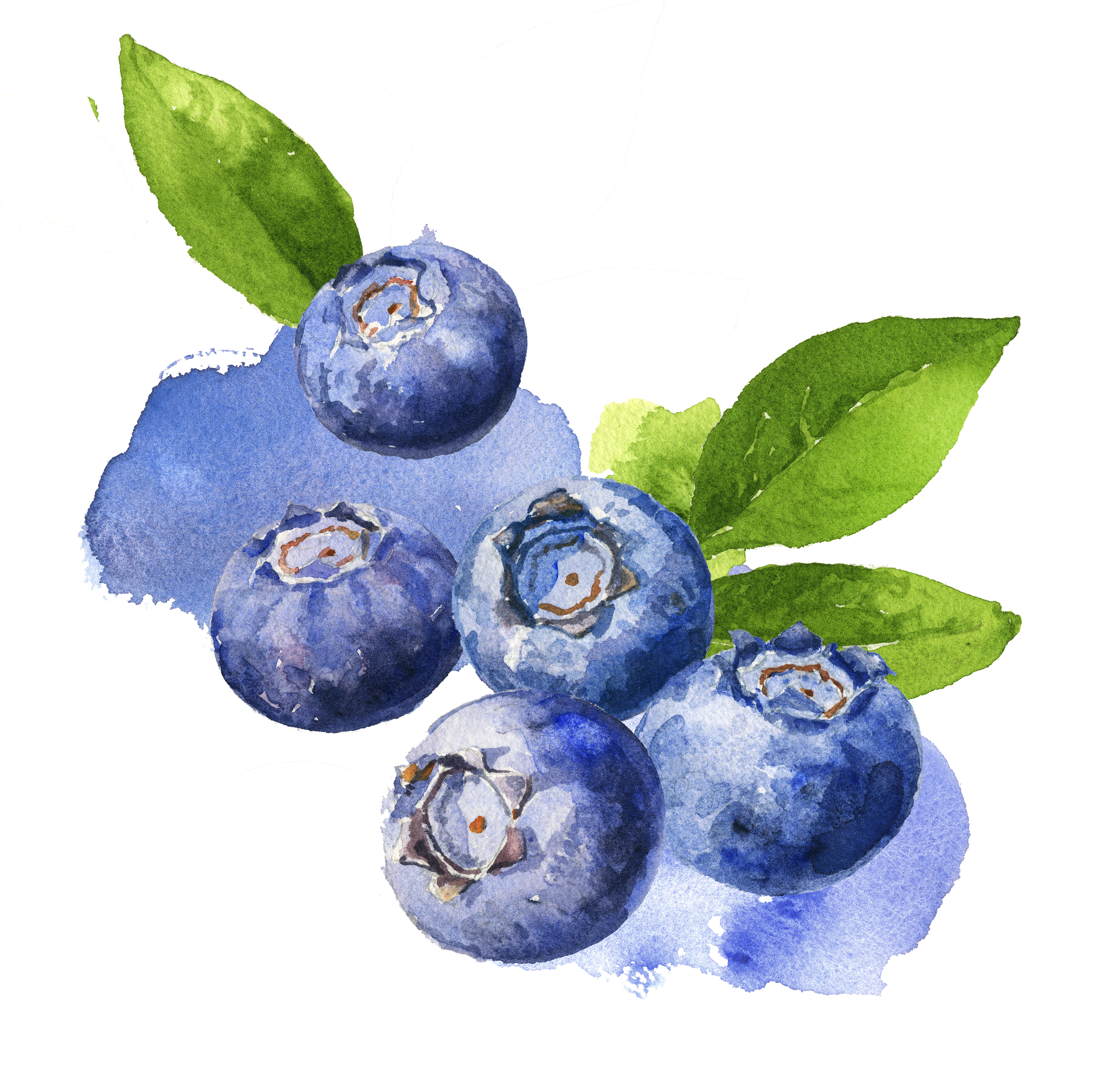 blueberries150.jpg