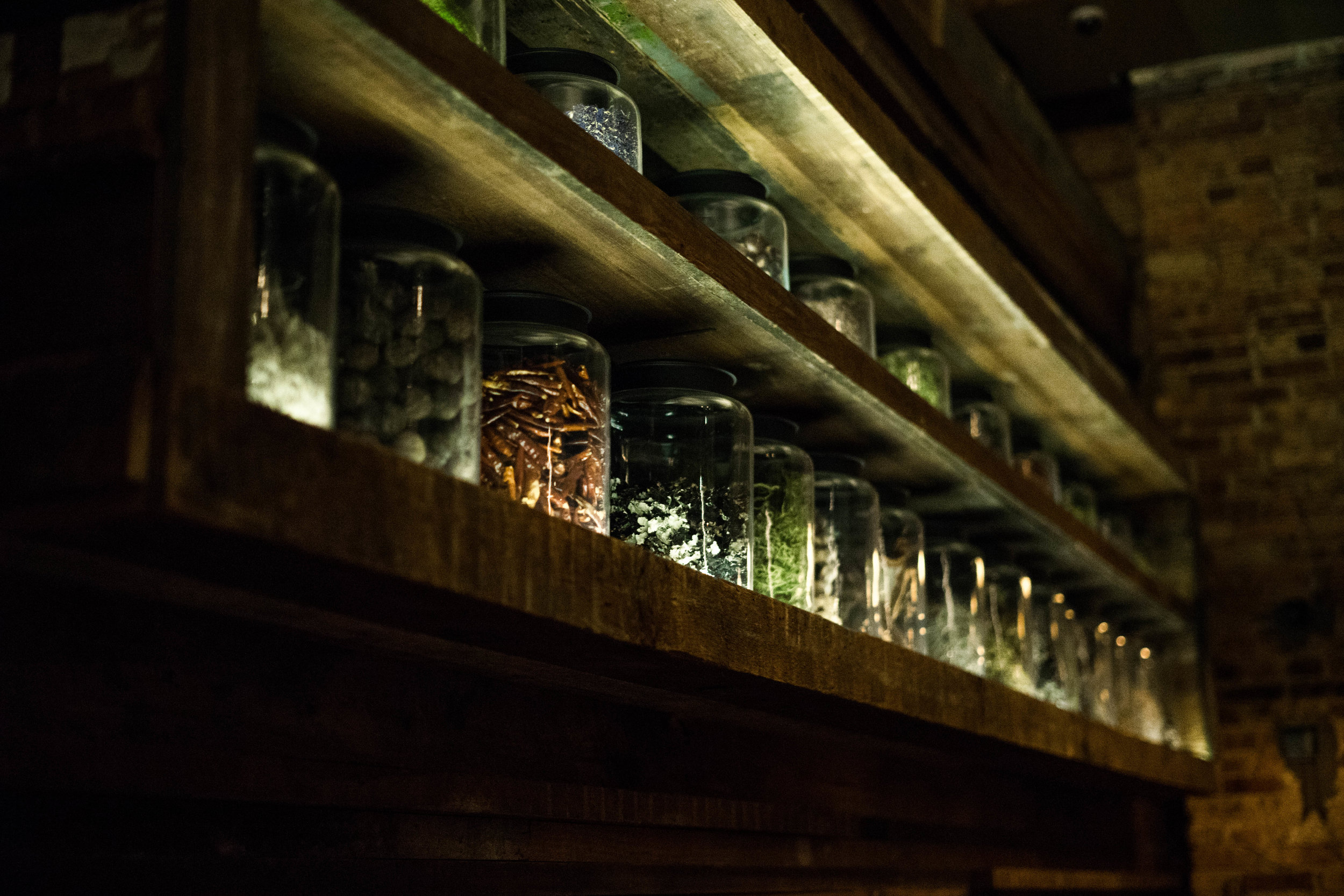 A wall of botanicals in specimen jars line the back wall of FR's brewpub in Chicago's West Town.