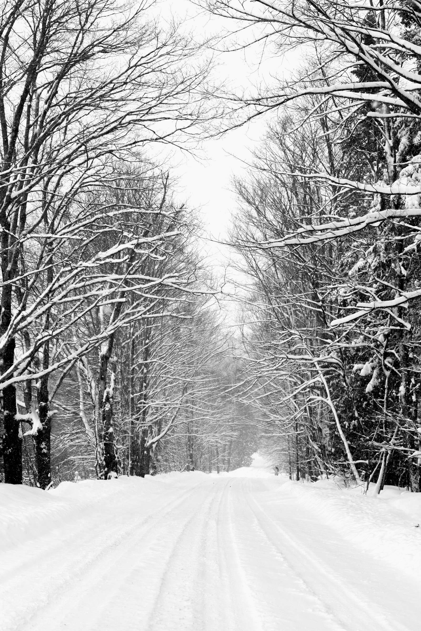 THR_Vermont-288.jpg