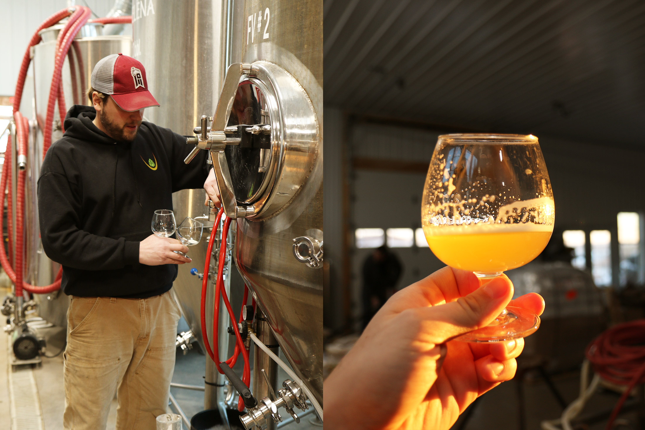 Frazee pulls fresh  Pompey Born Lager  off the tank.