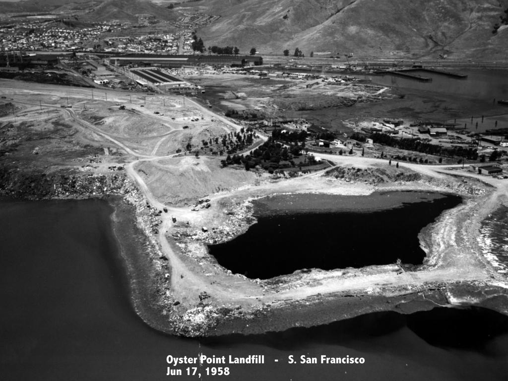 Karyl Matsumoto Oyster Point Landfill.jpeg