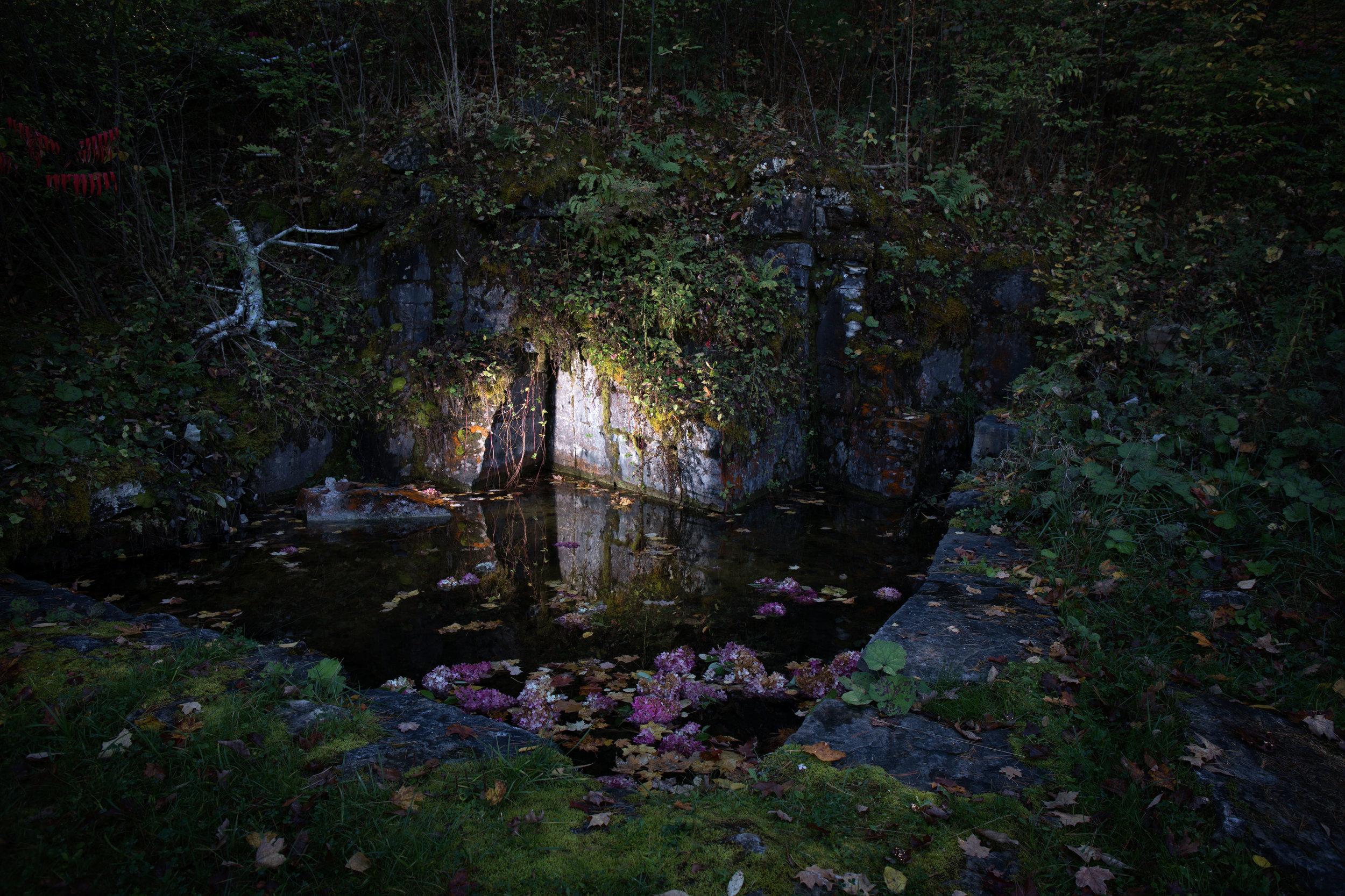 False Light-3.jpg