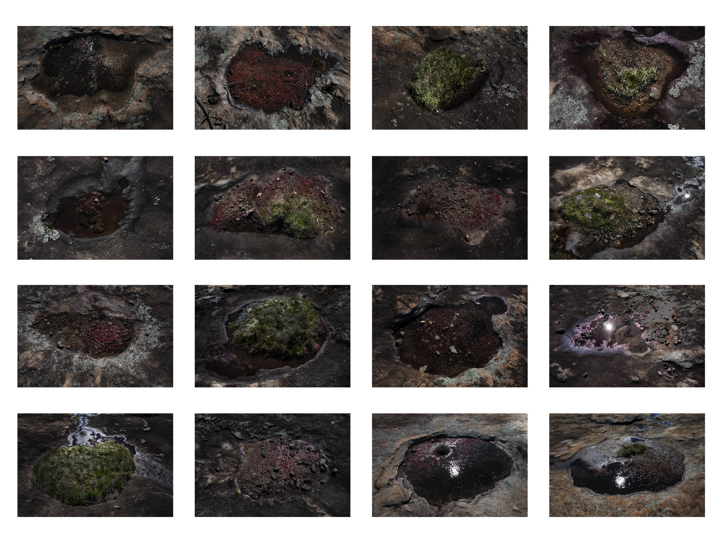 Cosmic Puddle Catalog