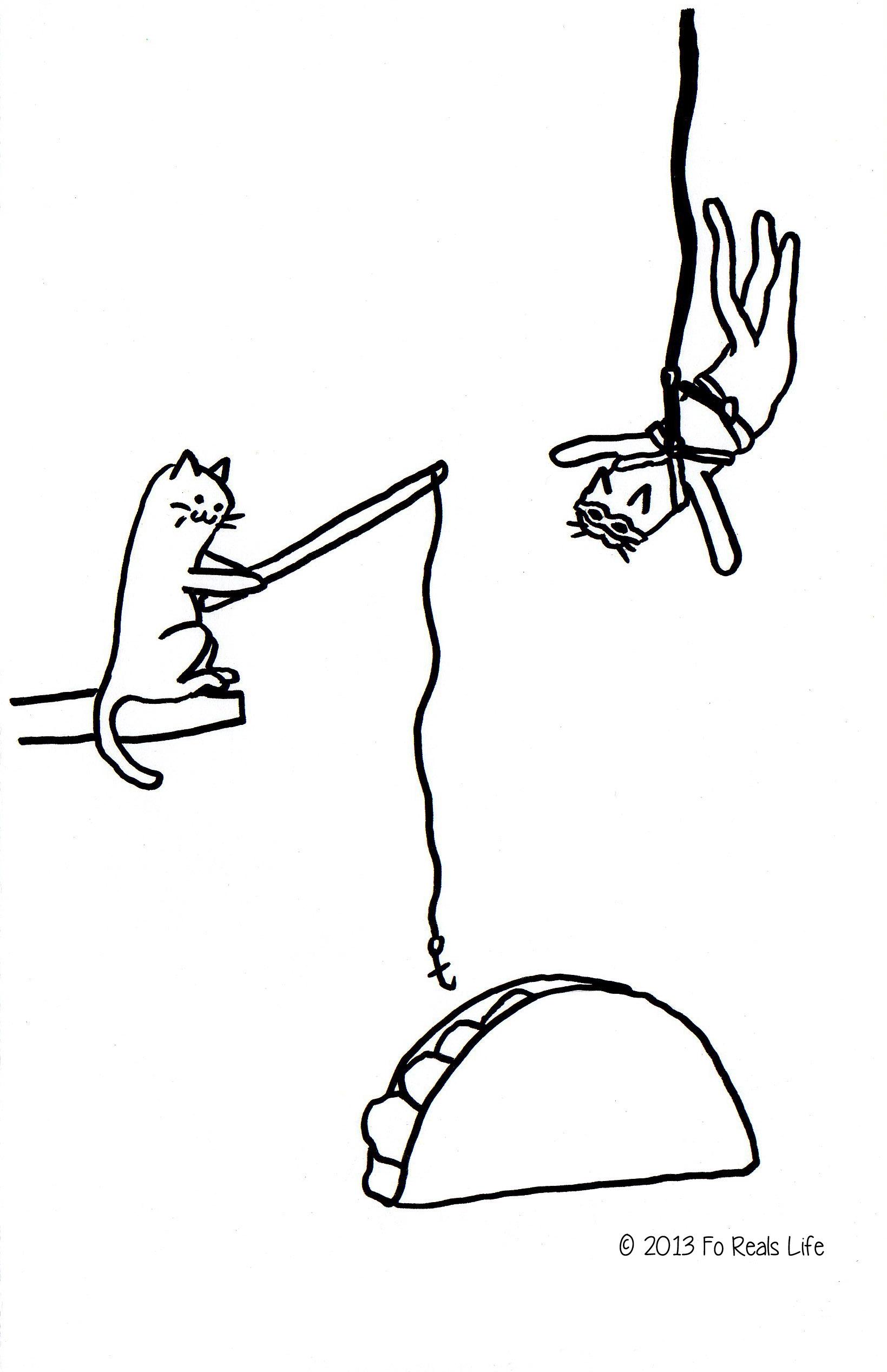 kittytacoparty.jpg