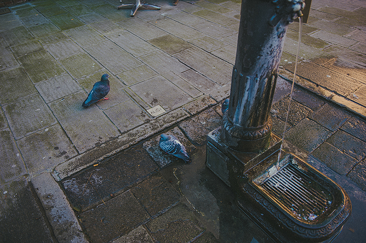 lisalefringhousephotography_Italy2010_008.jpg