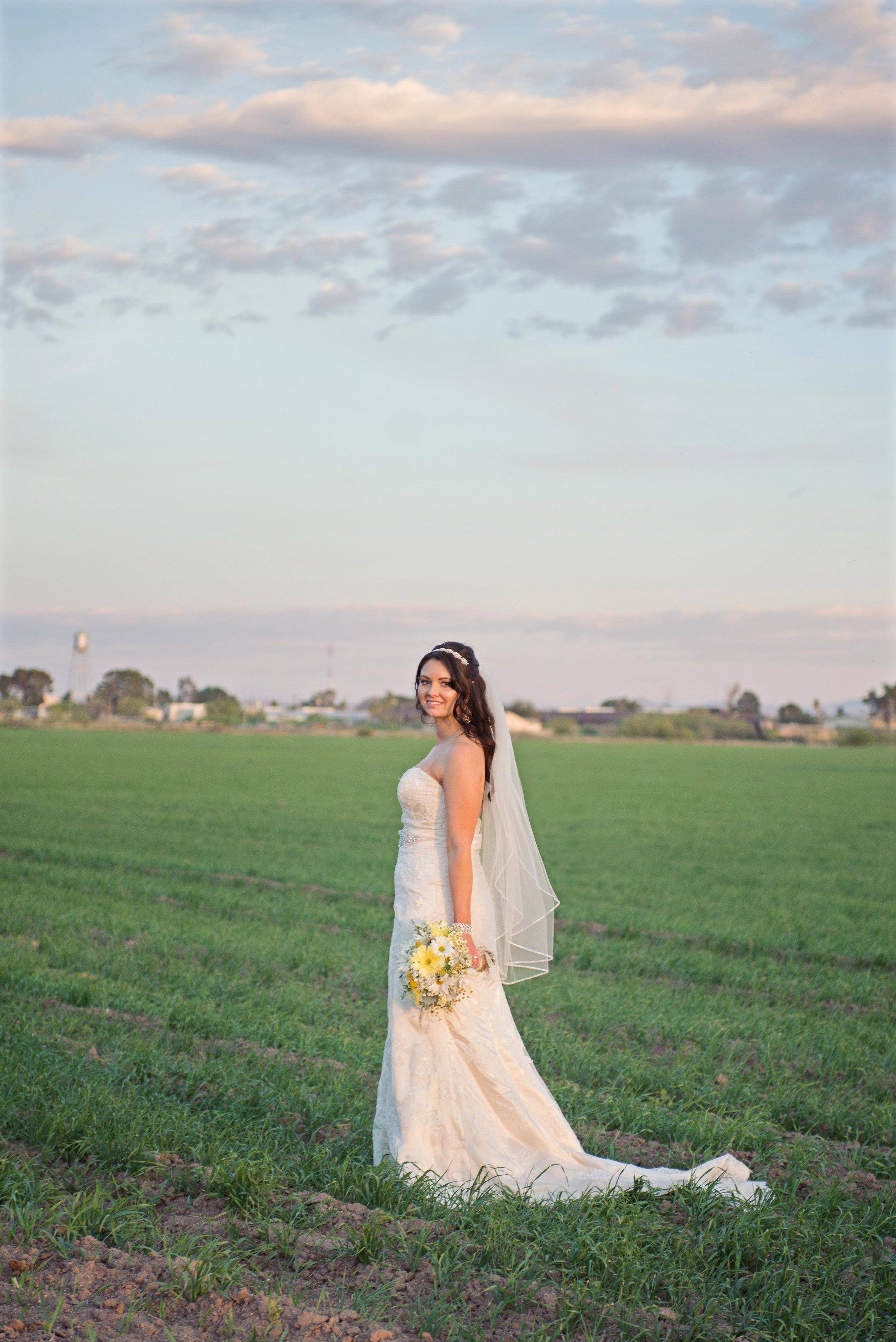 weddingwebsitesmallerpics-127.jpg