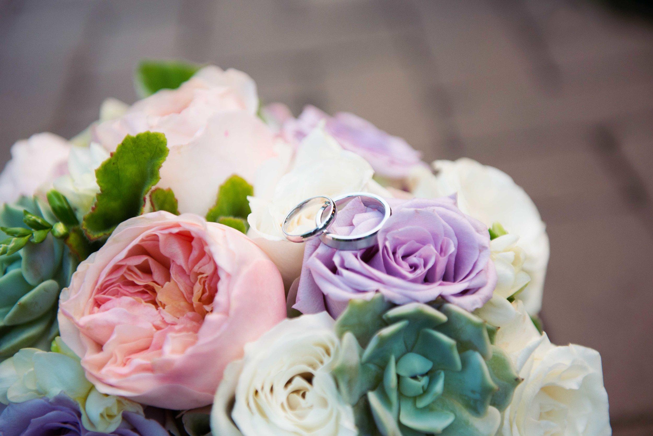 weddingwebsitesmallerpics-82.jpg