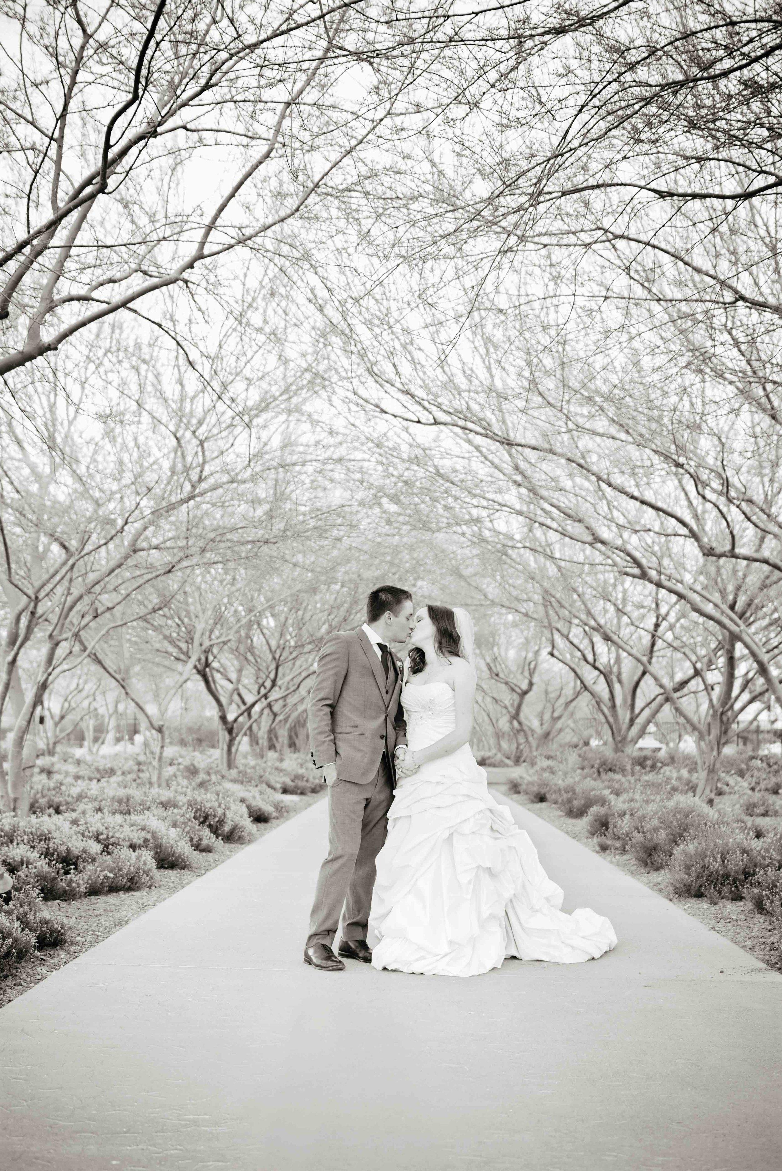 weddingwebsitesmallerpics-133.jpg