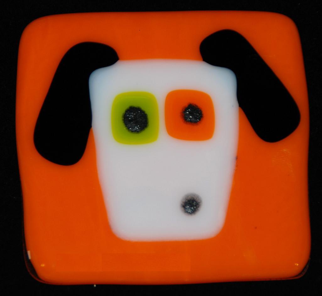 white dog on orange.jpg
