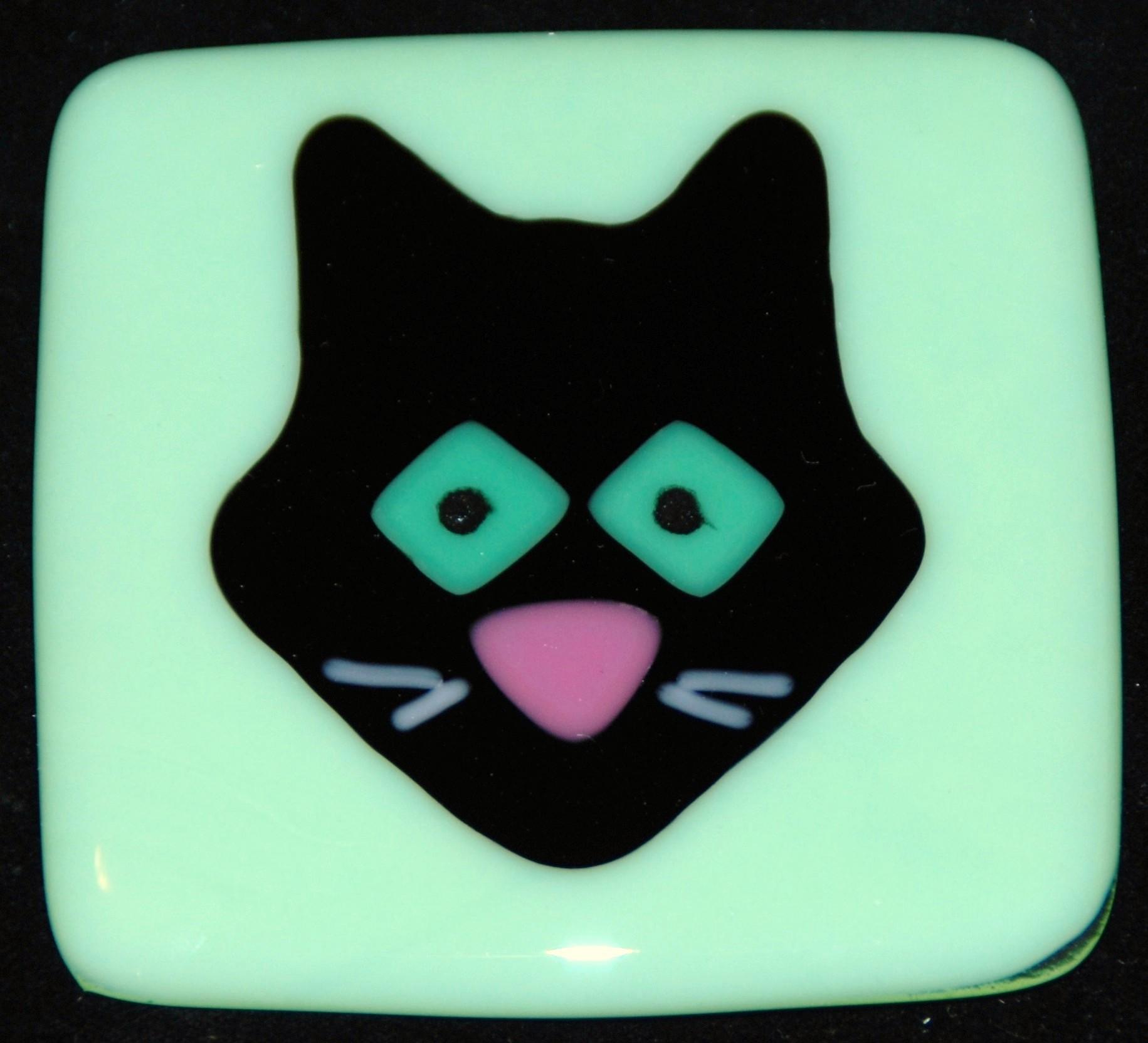black cat on mint green glass.JPG