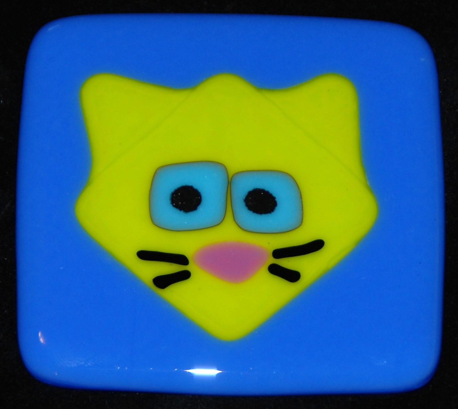 bright green cat on blue tile.JPG