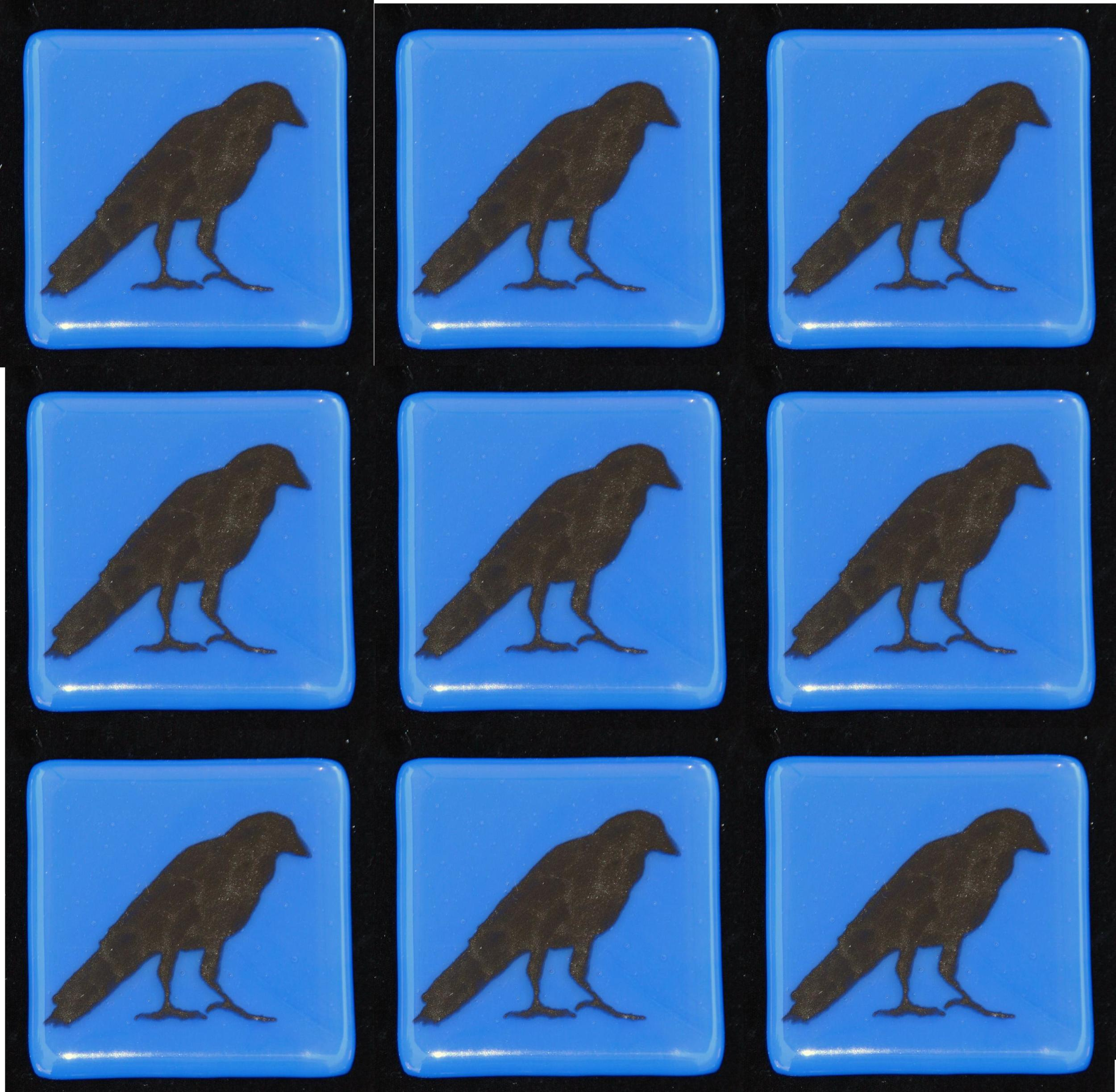 crow on blue.jpg