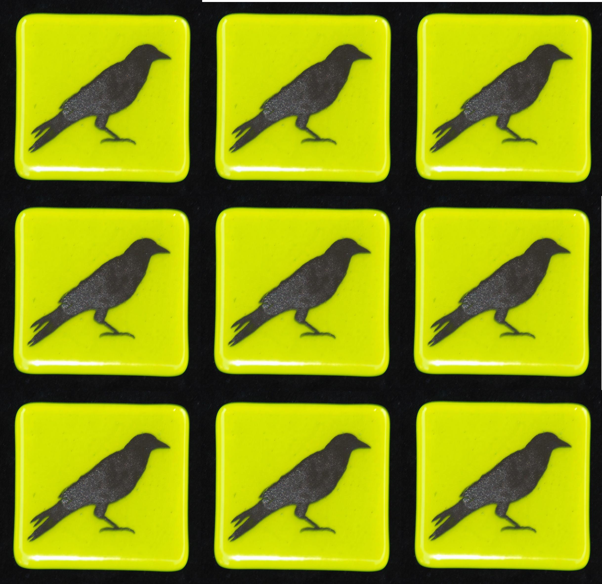 crow on green tiles.jpg