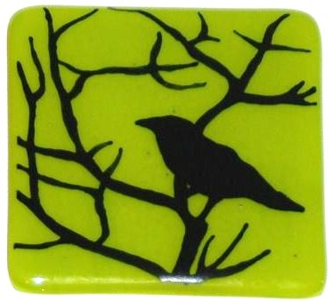 crow in thorn green - Copy.jpg