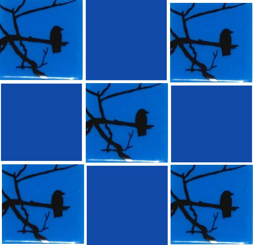 lonely crow with blue.jpg