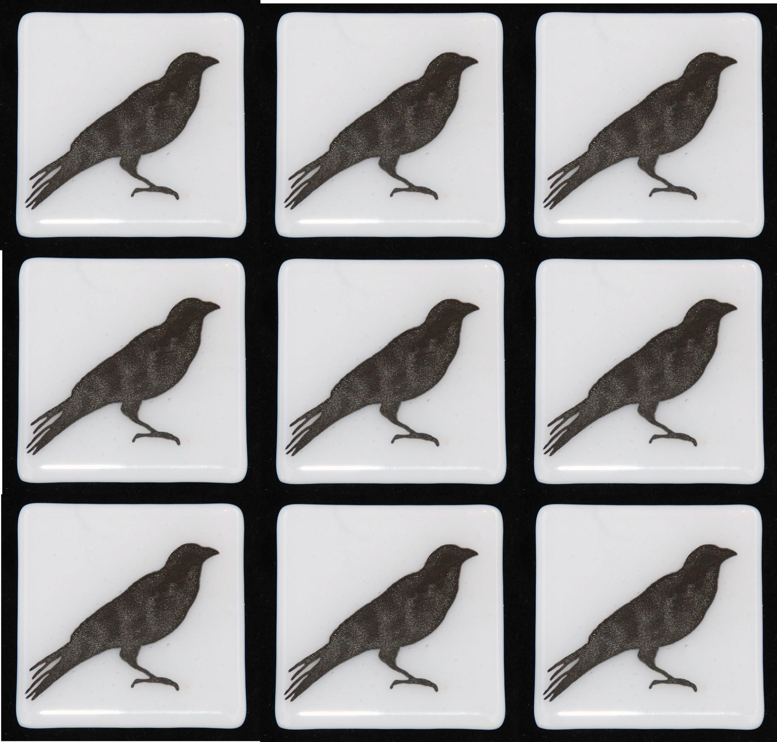 white crows.jpg