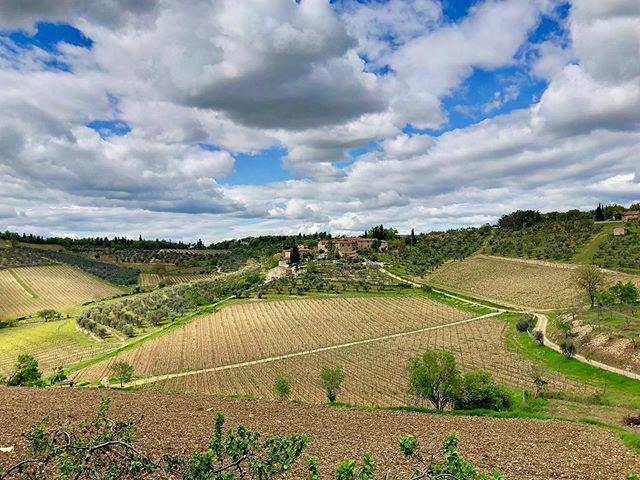Art and wine in Chianti