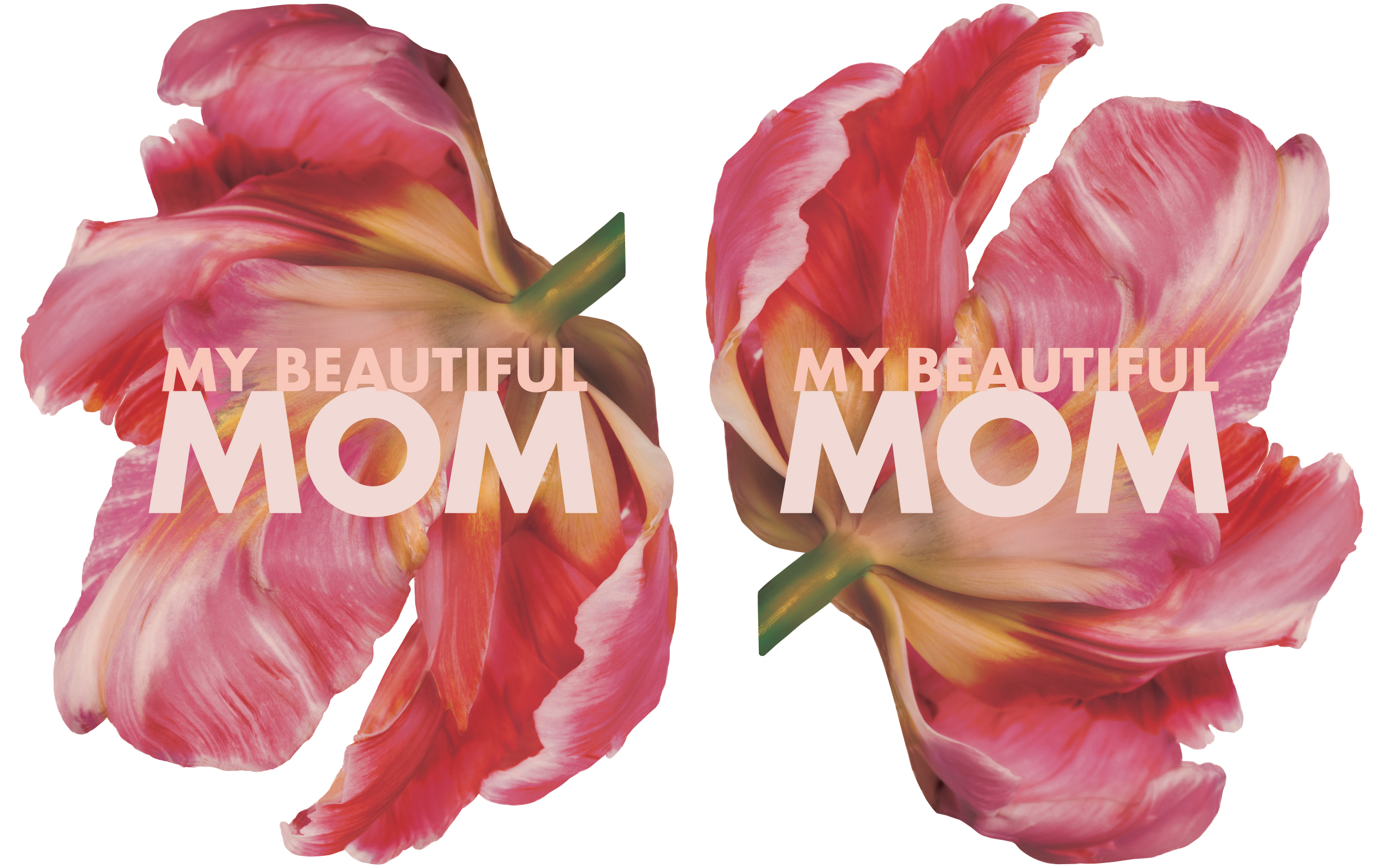 Murale Mother's Day 2017 Hanging Die cut Flowers: 35 x 26