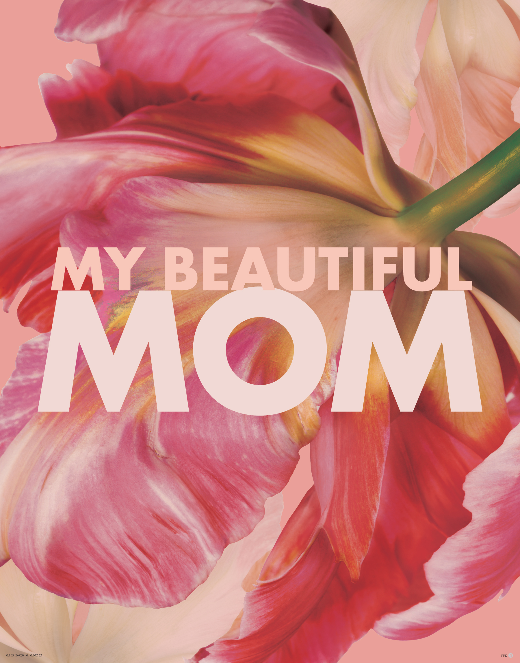 Murale Mother's Day 2017 Tstand 22 x 28