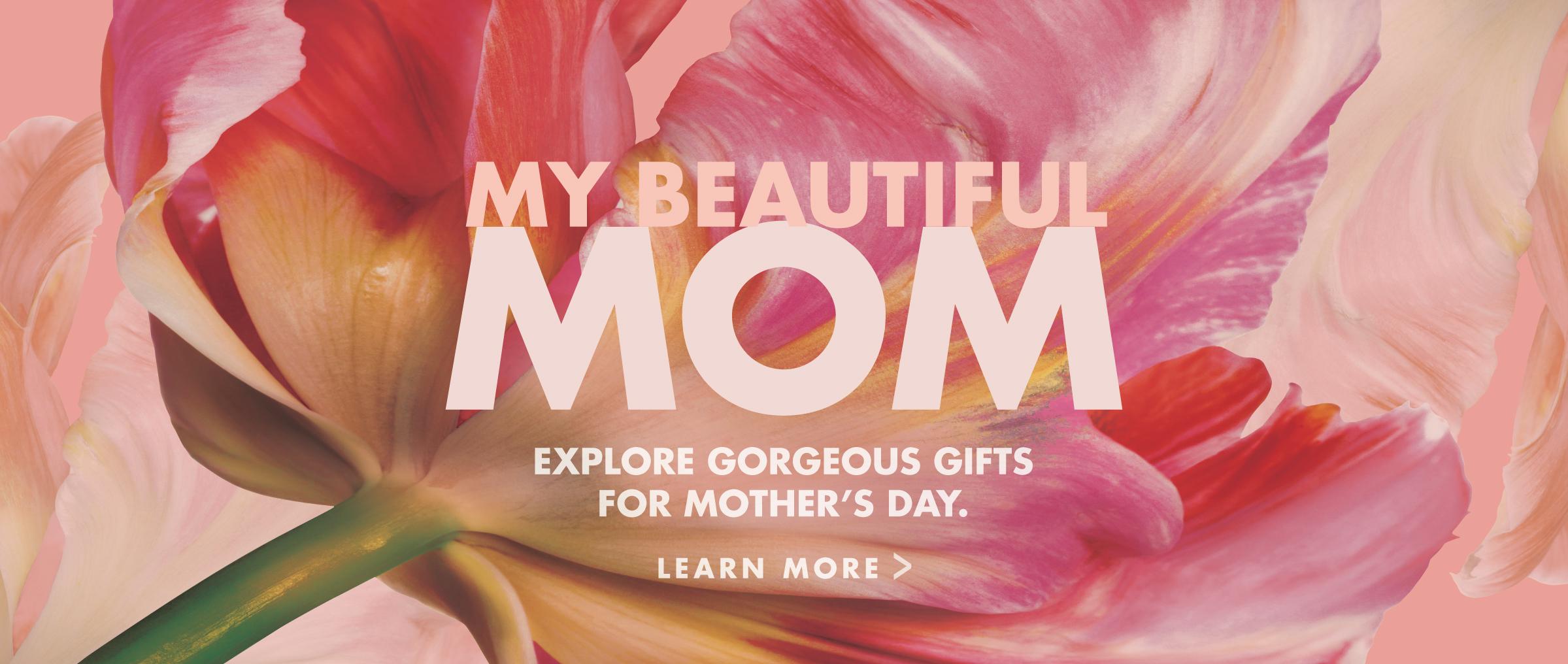 Murale Mother's Day 2017 Digital Hero Slider