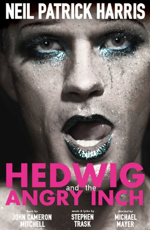 Hedwig_And_The_Angry_Inch_Poster_Art