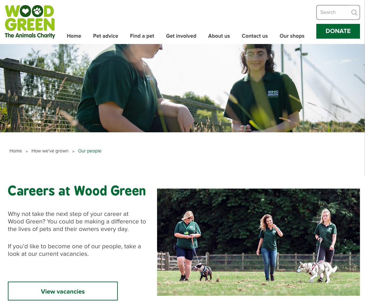 Website branding imagery shot for the Woodgreen Animal Charity. Documenting their staff and animals in a reportage style