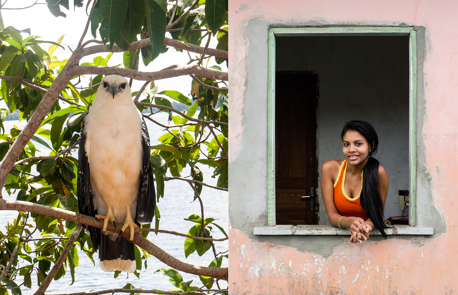 Laura and her pet Falcon, Parintins, Amazonas