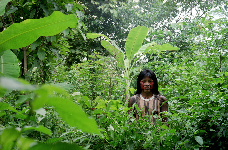 Metuktire Woman, Kayapó Tribe, Xingu National Park