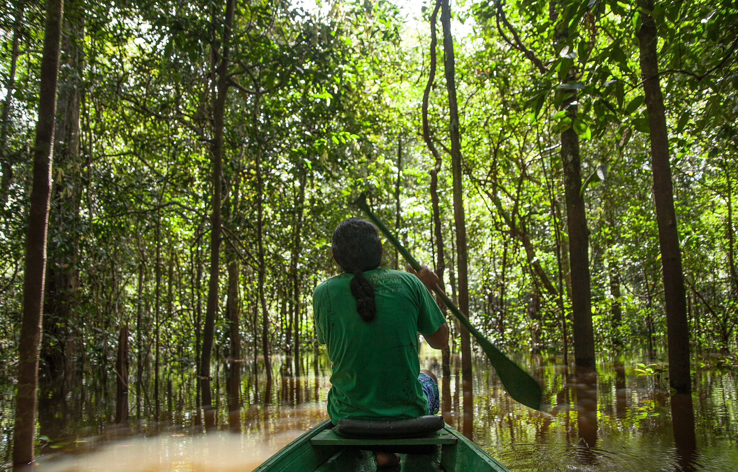 Mamirauá Reserve, Amazonas