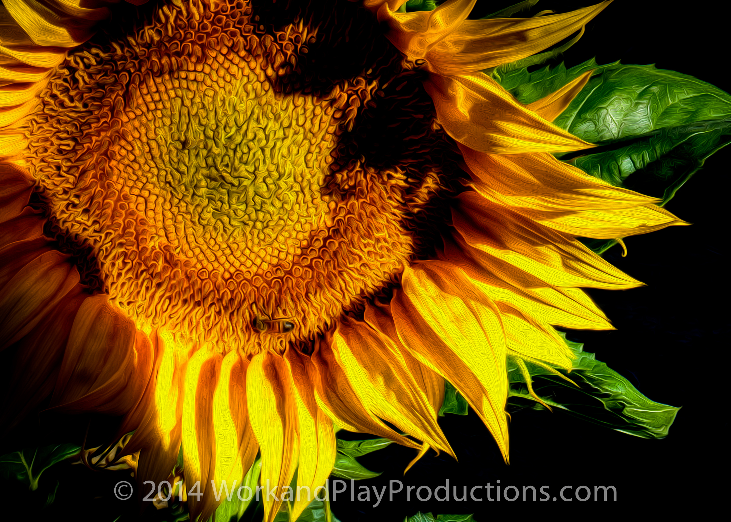 sunflower bee art.jpg