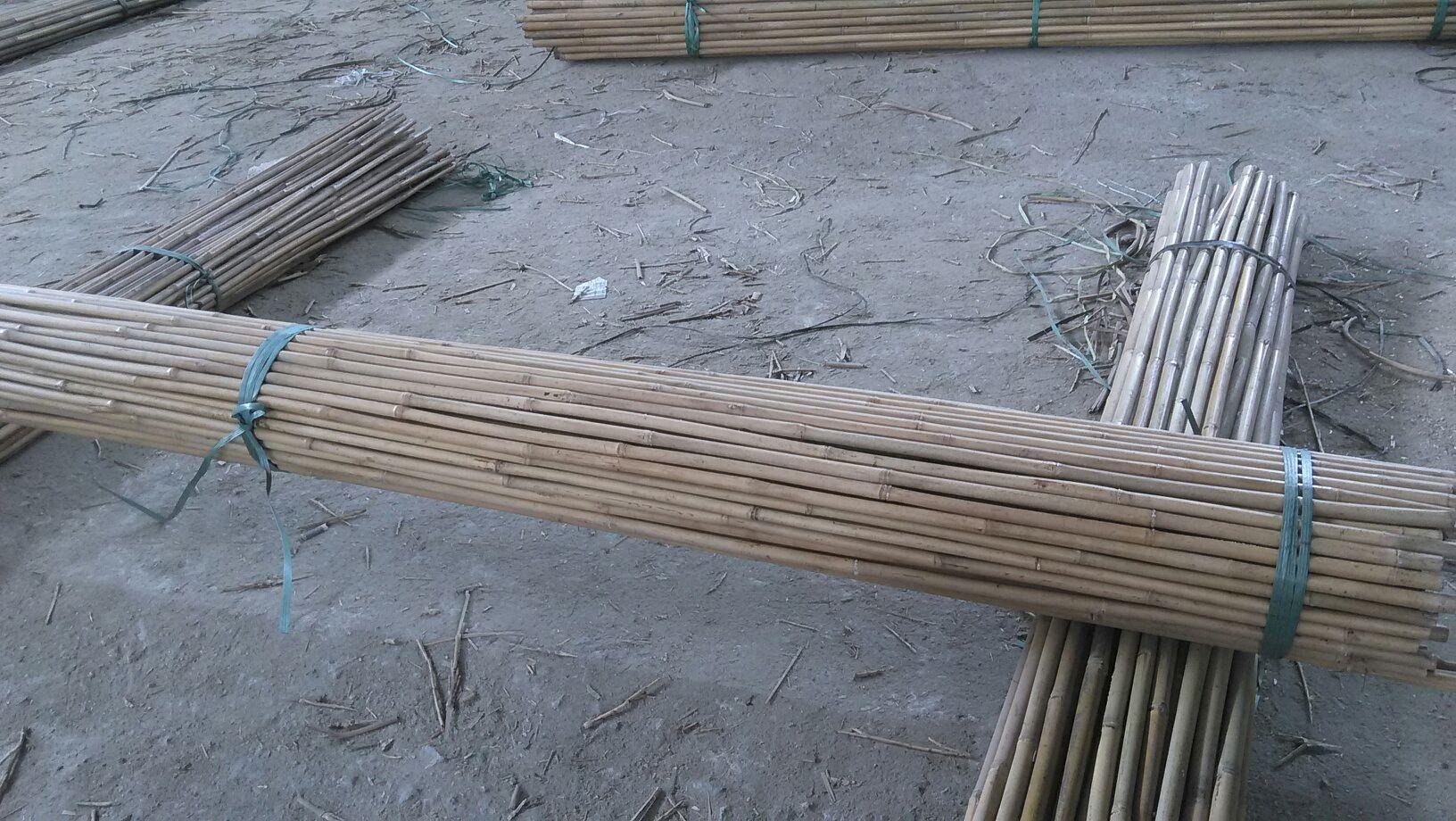 14-16mm Bamboo 180cm A.jpg