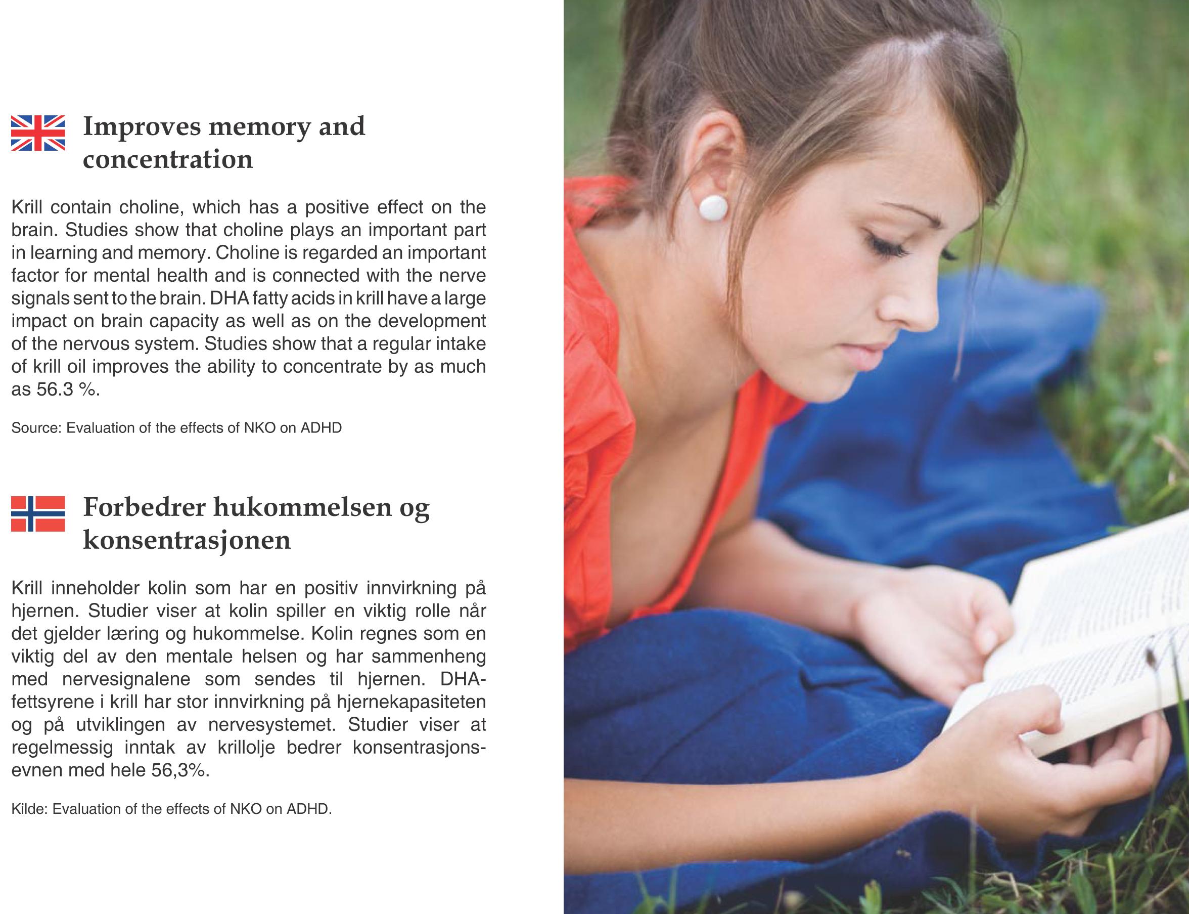 brosjyre-8.jpg