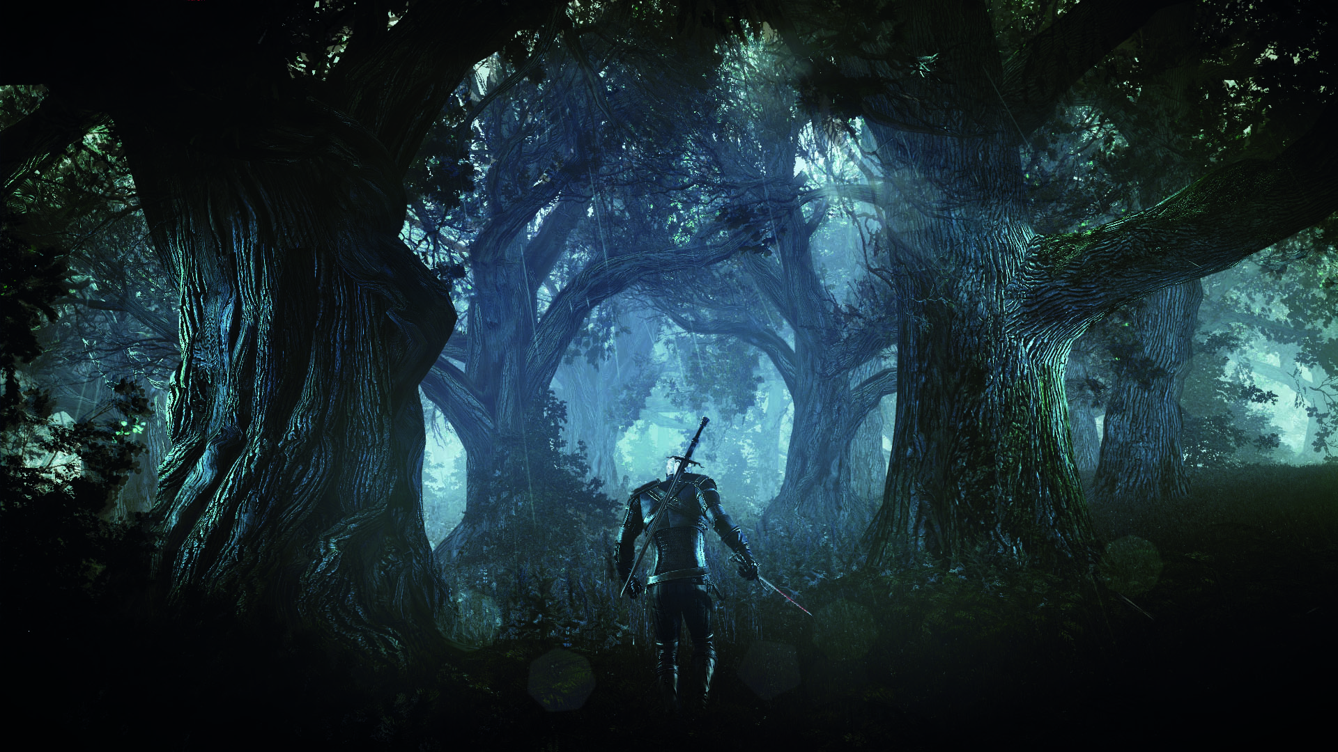 6262_The_Witcher_3_Wild_Hunt_Geralt_In_The_Forest.jpg
