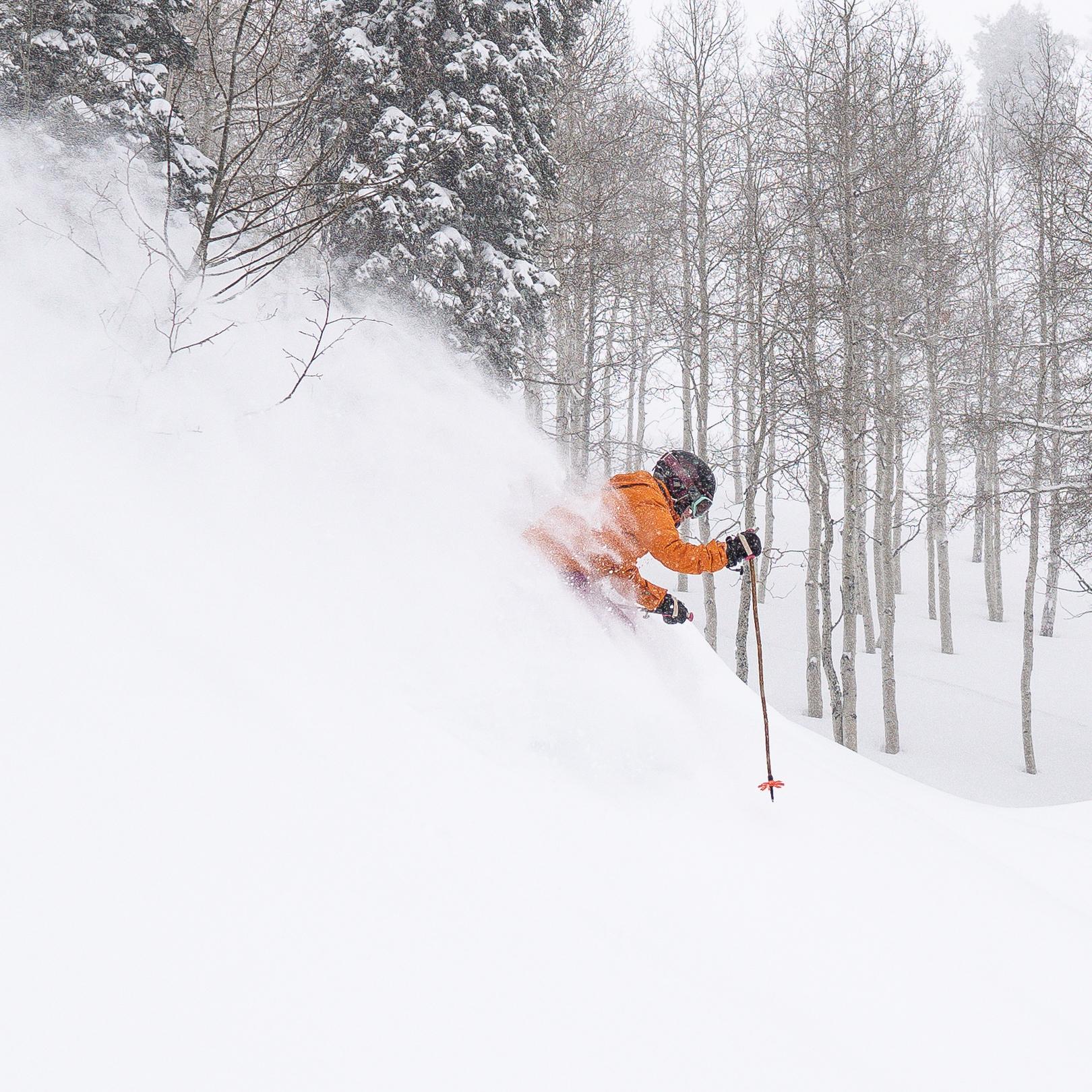 WinterSkiing-01-8.jpg