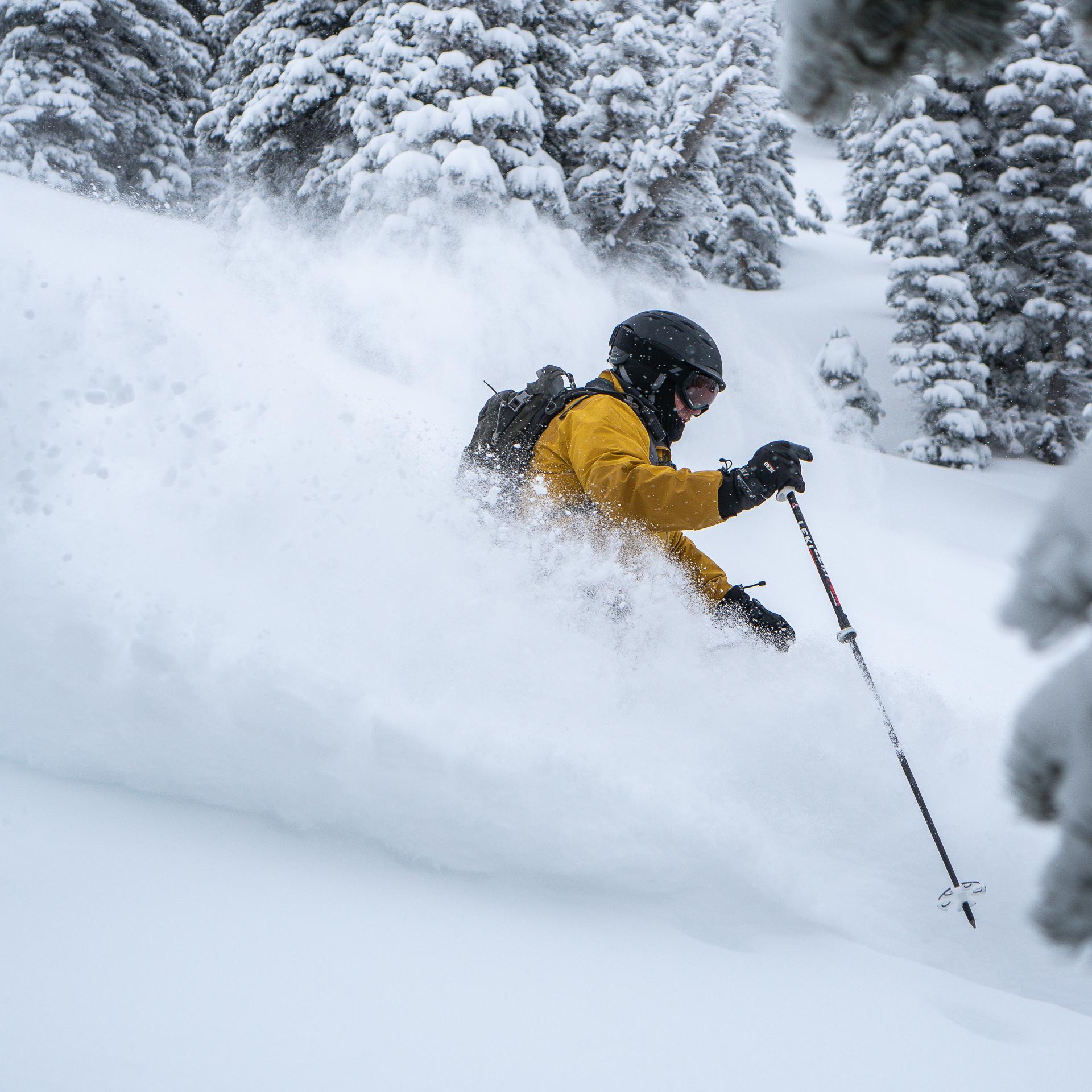 WinterSkiing-01-6.jpg