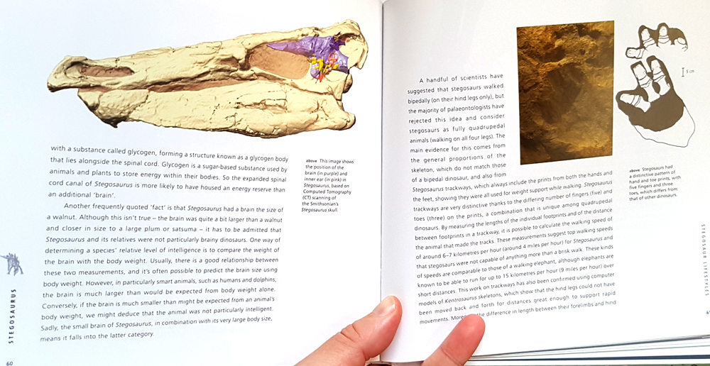 A look inside. This is an info-packed book with great graphics and loads of photos and diagrams.